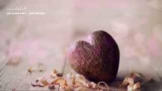 BEAT OF YOUR HEART || Hayley Westenra || Lyrics + Kara + Vietsub