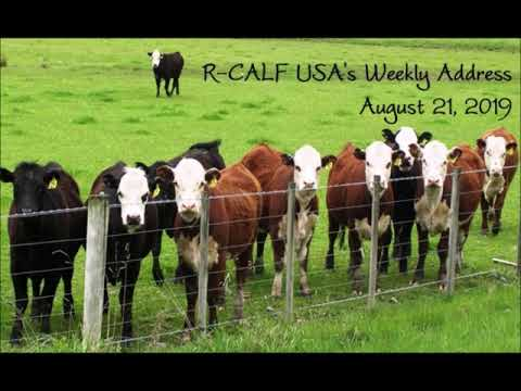 20th Annual R-CALF USA Convention Largest Ever