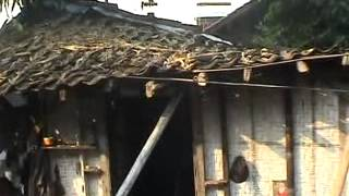 Dokumentasi Gempa Jogja 27 Mei 2006 Jogokariyan Part 2