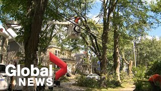 Hurricane Dorian: Extensive power outages in Atlantic Canada in the wake of storm