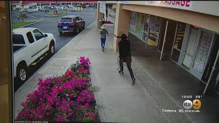 Woman Killed After Being Run Over In Attempted Purse Theft In Garden Grove