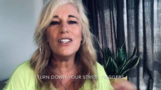 Turn down the stress triggers! - MENTAL WELLNESS MATTERS