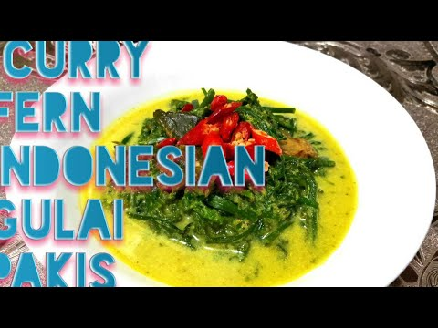 Curry Fern /Indonesian Gulai Pakis