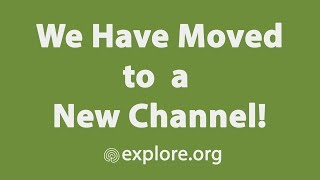 Important Update: We've Moved to a New Channel!