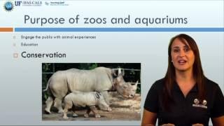 Why we study animal behavior