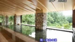 花巻温泉愛隣館岩手県の温泉ガイド