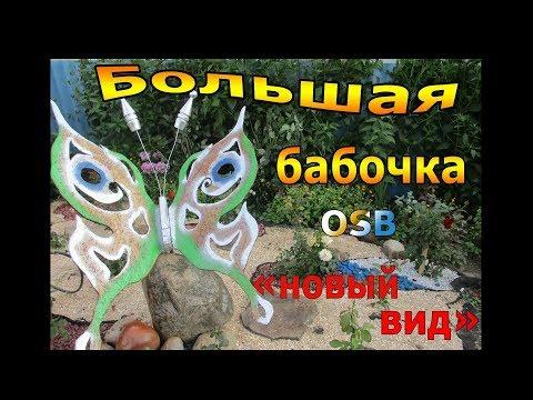 Большая бабочка OSB  «новый вид».