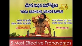 5 Most Effective Pranayamas - Basic Deep Breathing Exercises