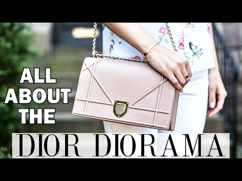 WHAT'S IN MY DIOR DIORAMA?! | REVIEW & THOUGHTS | Shea Whitney