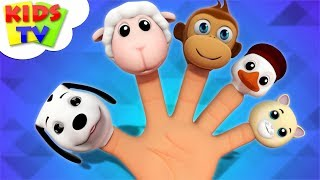 Animals Finger Family | Nursery Rhymes For Babies