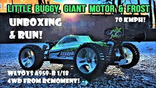 WLToys A959-B 4WD 70 km/h 43 mph 1/18 Buggy from RCmoment! Unboxing, First look and First Run!