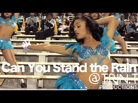 Can You Stand the Rain - Southern University Band & Dancing Dolls (2014) | SU vs TxSU