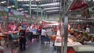 preview picture of video 'Chinese Meat Market in Guangzhou China (Warning Graphic Content)'