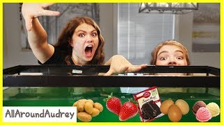 Mystery Ingredient Cooking Challenge / AllAroundAudrey
