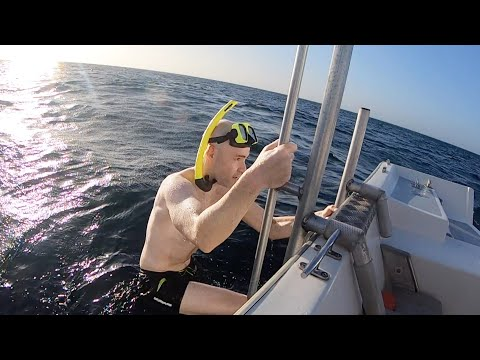 VLOG # 17 -- Aruba! World War II shipwreck, $1100 hotel room, working out with my mom, and more
