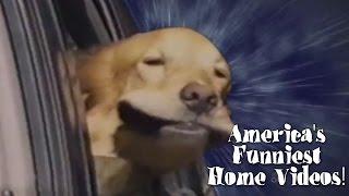 ☺ AFV Part 319 - Season 24 (Funny Clips Fail Montage Compilation)