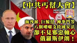 6.3 【中共丐幫大會】海沙派、巨鯨幫、神拳門等八個嘍囉支持國安法,卻不見邪惡軸心俄羅斯伊朗!