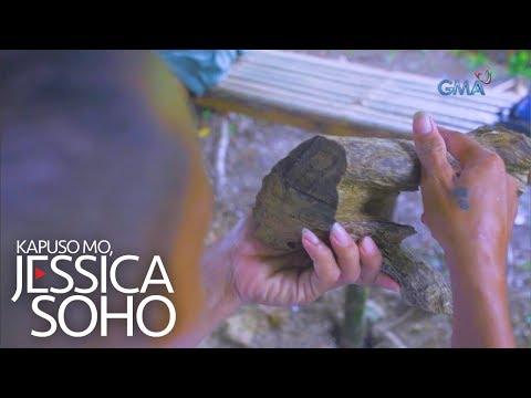 [GMA]  Kapuso Mo, Jessica Soho: Naging milyonaryo nang dahil sa puno ng lapnisan?