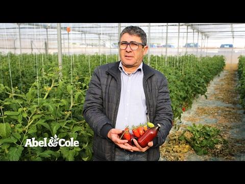 Cherry Tomato Passata, Organic, Abel & Cole (330ml)