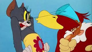 Tom và Jerry - Con chim đánh đuôi(Flirty Birdy, Viet sub)