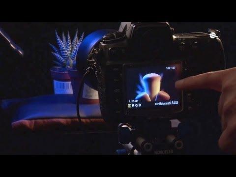 Das ABC der Makro-Fotografie - Blende 8 - Folge 97