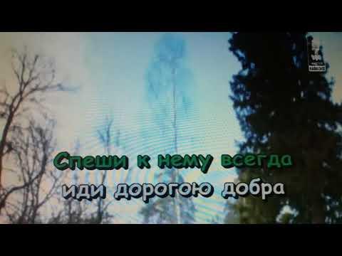 """Песня """"Дорогою добра"""" из к/ф """"Приключения маленького Мука"""""""
