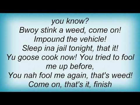 Sean Paul - Police (Skit) Lyrics
