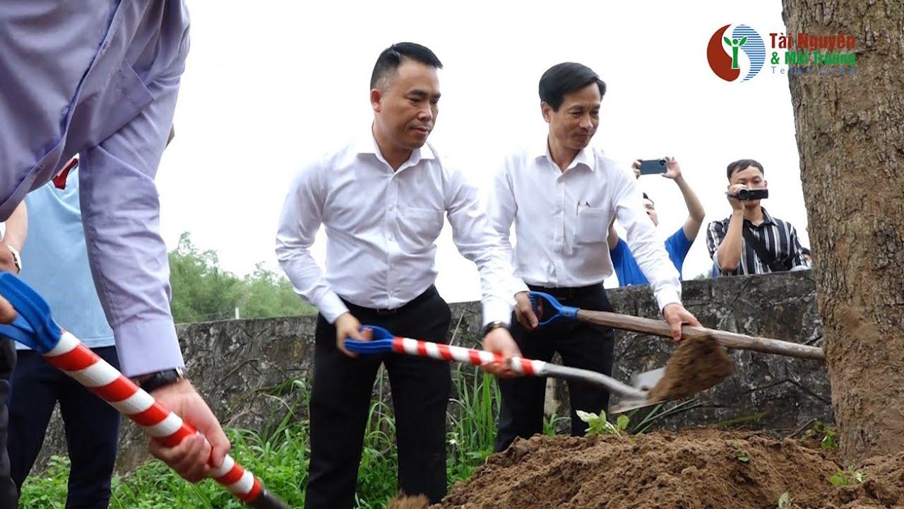 """Chương trình """"Chùa Xanh"""" trồng cây tại chùa Thắng Phúc, Hải Phòng"""