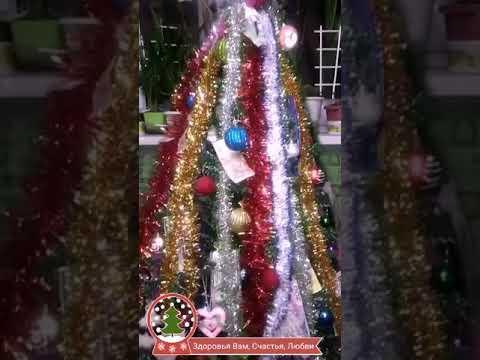 Ёлка- все зависит от нас Чтобы был достаток круглый год Нужно Красиво и правильно наряжать елку