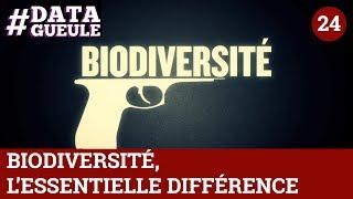 Chap. 18 - Biodiversité, l'essentielle différence