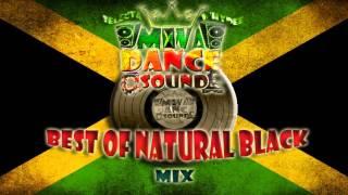 NATURAL BLACK REGGAE DANCEHALL MIX