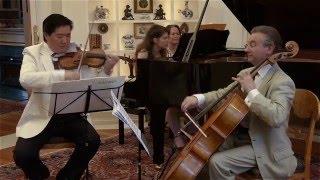 Franz Schubert - Piano Trio No. 2 in E flat major,  III. Scherzo - Allegro moderato