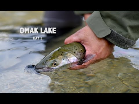 Big Lahontan Cutthroats from Omak Lake