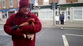 preview picture of video 'Lost Oakham Chicken won't be eaten'