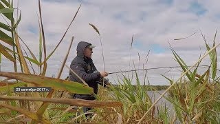 Шадринск соревнования по рыбной ловле хищника