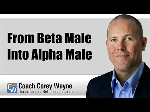 how to become alpha male from beta male