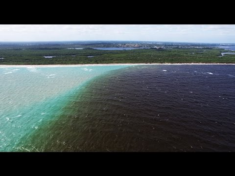 "Video: ""Blackwater"" Discharges Threaten Florida's Indian River Lagoon and St. Lucie Inlet"