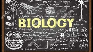 AP Biology - Course Overview