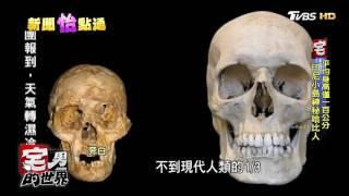 """地球真的有""""哈比人""""! 印尼發現小矮人骨骸 宅男的世界 20170221"""