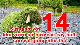 Sững sờ với 14 khu vườn sở hữu các cây hình con vật giống như thật