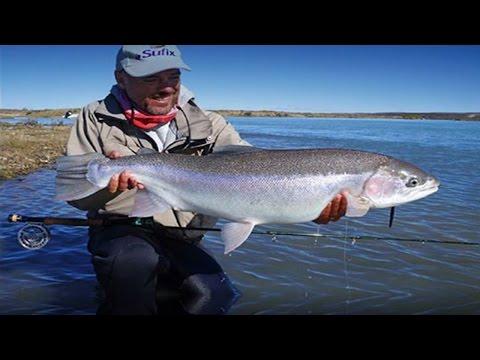 Cause invernali dalla Finlandia per pesca e