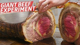 """""""This Is the Most Expensive Meat Experiment We"""