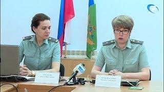 Задолженность новгородцев по алиментам составляет 1 миллиард 200 тысяч рублей