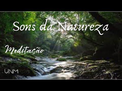 Meditação - Som relaxante da Natureza | Fluxo de Água e Canto dos Pássaros - Meditar