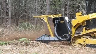 cat 299d2 xhp forestry package - मुफ्त ऑनलाइन