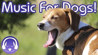 Music Therapy for Dogs: The BEST Music to Chill Your Dog this Halloween!