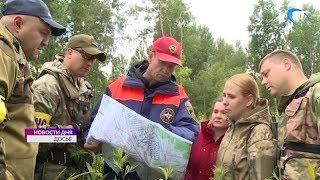 В Новгородской области с начала года в лесах заблудилось уже 33 человека