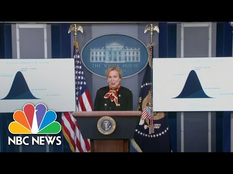 Dr. Birx Outlines Estimated Coronavirus Deaths In April | NBC Nightly News