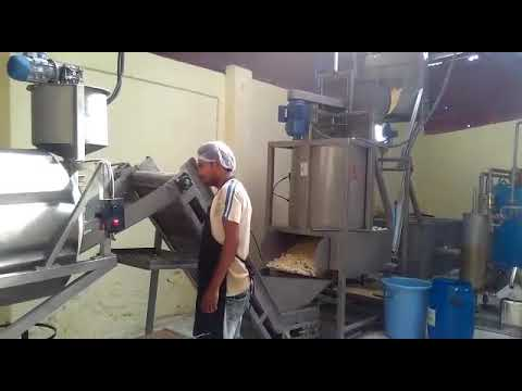 Batch Fryer for Snacks