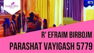 Parashat Vayigash